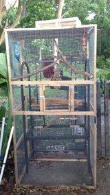 """Critter Cage 27""""x36""""x72"""" with parrot gym in Jacksonville, Florida"""
