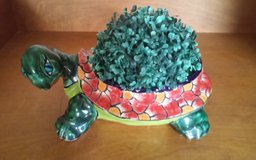 Turtle Planter in Conroe, Texas