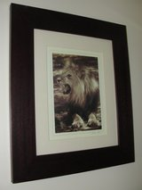 "BEAUTIFUL ""LION"" FRAMED ART WORK FROM TARGET in Camp Lejeune, North Carolina"