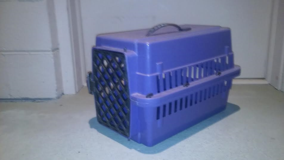 Purple Pet Carrier in Beaufort, South Carolina
