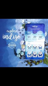 Scentsy indigo set in Tacoma, Washington