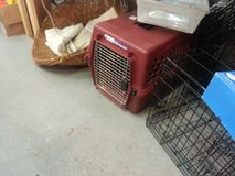 Dog crates in Beaufort, South Carolina