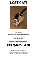 Male  cat missing name  is tomas in Fort Polk, Louisiana