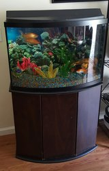 $36 Gallon Fish Tank in Jacksonville, Florida