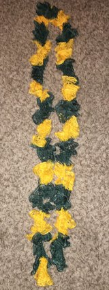 Green and Yellow Scraft in Dyess AFB, Texas