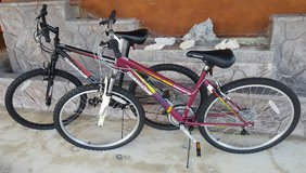 12 Speed Bikes $60.00 each or $100.00 for both in Okinawa, Japan