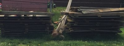 Used Fence Panels in Hopkinsville, Kentucky