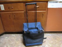 Cooler bag on wheels in Alamogordo, New Mexico
