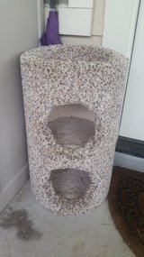Cat Tower in The Woodlands, Texas