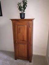 Wood Cabinet in Naperville, Illinois