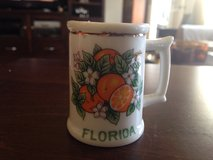 Vintage Florida Mini Mug in Naperville, Illinois