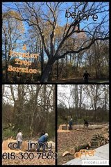 Tree services :-) removal trimming etc! in Fort Campbell, Kentucky