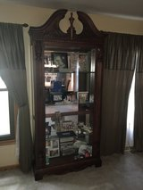 Cherry wood Curio cabinet with lights in Algonquin, Illinois