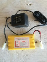 Nickel cadmium AA 700 mAh 9.6V battery and charger in Naperville, Illinois