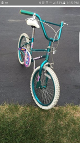 Girls bike in New Lenox, Illinois