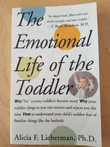 The emotional life of the toddler in St. Charles, Illinois