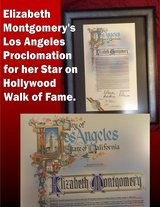 Bewitched Elizabeth Montgomery's Proclamation for Hollywood Walk of Fame Star in Glendale Heights, Illinois