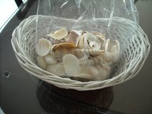 Basket with shells in Ramstein, Germany