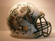 Derrelle Revis Painted NFL Jets Helmet in Conroe, Texas