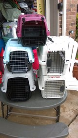 small pet kennels in Lawton, Oklahoma