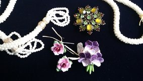 English China broach /earring in Wiesbaden, GE