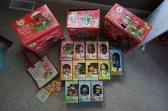 Vintage Strawberry Shortcake collection in Naperville, Illinois
