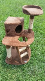 Cat Tree Condo in Fort Campbell, Kentucky