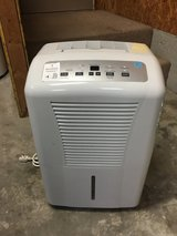 Dehumidifier in Tyndall AFB, Florida