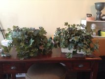 2 Greenery Baskets in Melbourne, Florida