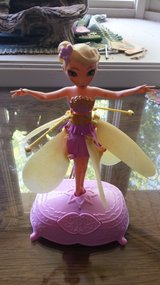 Flutterby Fairy in Chicago, Illinois