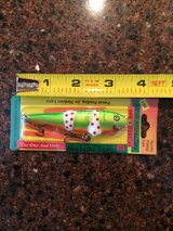 Novelty Custom Hand Painted Fishing Lure in Naperville, Illinois
