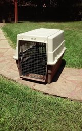Large Dog Grate in Kingwood, Texas