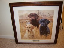 Framed Lab Puppies Print in Glendale Heights, Illinois