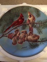 "Backyard harmony Collectible Plate ""The Singing Lesson"" in Fort Campbell, Kentucky"