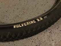 WTB Wolverine mountain bike tires in Wheaton, Illinois