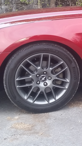 18 inch Mustang Club of America Rims in Fort Drum, New York