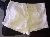 Size 11 Shorts in Vista, California