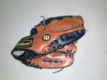 Baseball gloves for youth in Naperville, Illinois