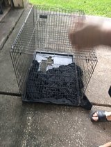 Dog cage in Houston, Texas