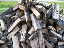 Trees For Fire Wood in Leesville, Louisiana