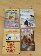11 chapter books for sale in Beaufort, South Carolina