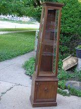 Lighted Curio Cabinet in Bolingbrook, Illinois