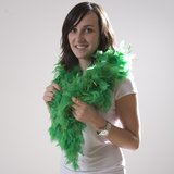 NEW!!  FEATHER BOA - 6' CHANDELLE GREEN with GOLD TINSEL in Bartlett, Illinois