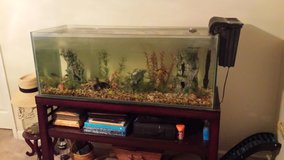 75 Gallon Fish Tank w/ stand in Camp Lejeune, North Carolina