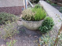 concrete flower pot round in Ramstein, Germany