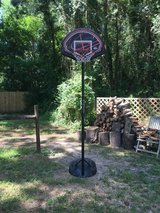 Lifetime basketball goal in The Woodlands, Texas