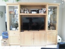 Tv cabinet in Jacksonville, Florida