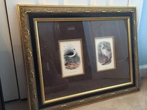 Black Winged Stilt & Little Egret Framed Prints in Camp Lejeune, North Carolina