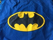 Batman Bedding and Room Decor in Westmont, Illinois