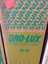 Gro-Lux Bulbs case of 12 in Houston, Texas